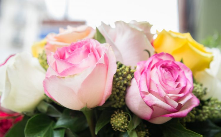 Flowers that are Perfect for Romantic Date